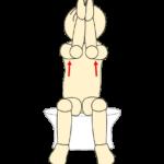 タオルで肩甲骨体操21