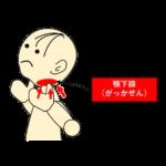 唾液腺マッサージ3