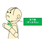 唾液腺マッサージ4