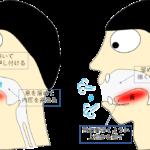 パタカラ4(ら)